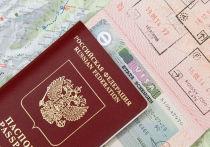 Госдума приняла в первом чтении два «революционных», по словам депутатов, законопроекта, смягчающих визовую политику России