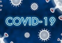 20 марта: в Германии 16.033 новых случаев заражения Covid-19, за сутки новых смертей ещё 226.
