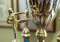Юные спортсмены Донецкой Народной Республики часто принимают участие в российских соревнованиях