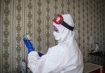 В Крыму замедлился темп распространения коронавируса, но расслабляться еще рано