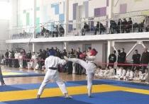 Около 150 спортсменов стали участниками турнира по рукопашному бою в Пскове