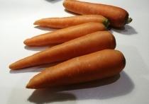 Огурцы, свекла, редис и морковь: от разнообразия семян на полках магазинов рябит в глазах
