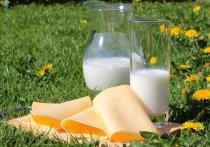 Кандидат медицинских наук, врач-гастроэнтеролог Марат Зиннатуллин рассказал, что чаще всего пищевые отравления происходят из-за молочных продуктов, поскольку они имеют очень ограниченный срок годности