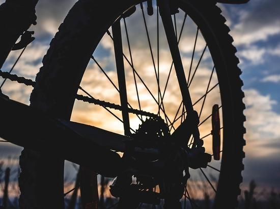 В центре Барнаула состоится велопробег в честь «Часа Земли»