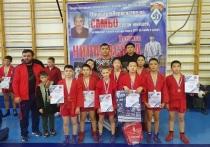 Юные самбисты из Калмыкии завоевали девять медалей