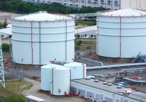 В письме Независимого топливного союза (НТС) сказано, что в России до конца текущего года цена бензина в рознице может вырасти выше инфляции, а при худшем сценарии — на 14%