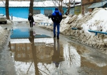 Резкое потепление ожидается в Новосибирске в конце марта