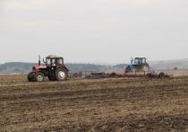 Данные средства в виде субсидий будут выделены фермерам в рамках программы поддержки сельхозпроизводителей из федерального и регионального бюджетов для компенсации части собственных затрат