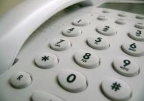 24 марта Росреестр по Марий Эл проведет День консультаций по телефону