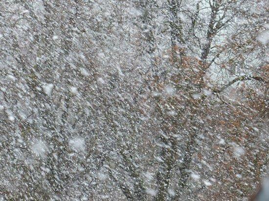 МЧС предупредило жителей Алтайского края об ухудшении погоды