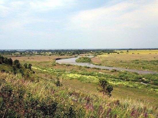 Алтайский край вошел в топ-5 рейтинга экологически безопасных регионов РФ
