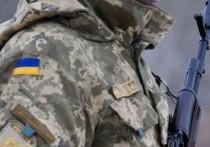 На Донбасс прибыли боевики запрещенного в РФ «Правого сектора»