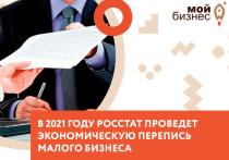 Рязанский малый бизнес призвали принять участие в экономической переписи
