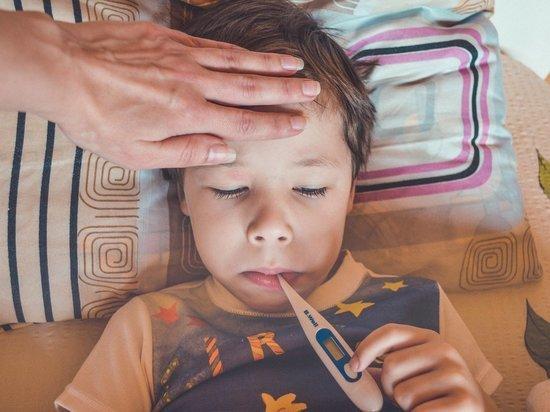 15 детей отравились в детском саду в Суздале