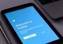 Яшин и Ройзман пригрозили Роскомнадзору судом из-за блокировки Twitter