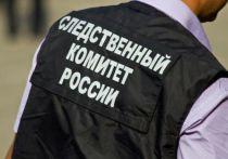 СК завершил расследование убийства главы центра