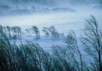 24 и 25 марта в Хакасии ожидается очень сильный ветер