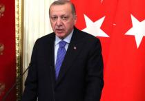 Эрдоган раскрыл план Турции в Сирии