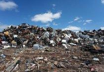 Власти Новокузнецка пообещали избавиться от свалки на месте бывшей школы в Куйбышевском районе