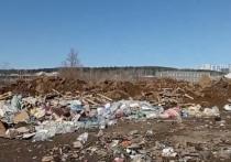 В Первомайском районе Ижевска образовалась несанкционированная свалка
