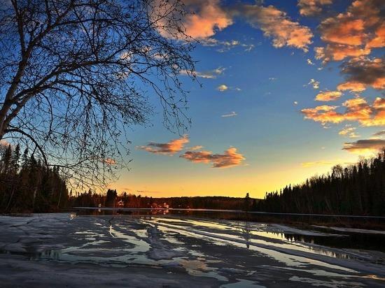 До +12 градусов потеплеет в выходные в Алтайском крае