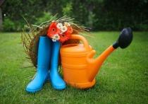 В Тамбовской области с 29 марта по 2 апреля пройдут приёмы для дачников и садоводов