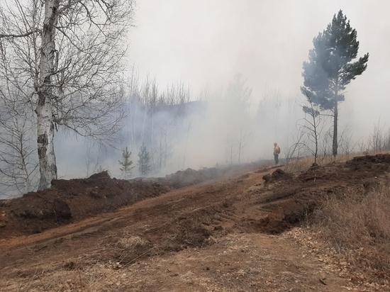 В одном из районов Забайкалья ввели особый противопожарный режим