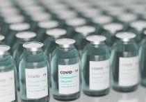 Германия: Вакцинация в ЕС против Covid-19 идёт всё ещё слишком медленно