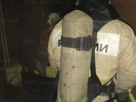 Из горящей многоэтажки в Рубцовске эвакуировали девять человек