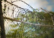 Чиновницу из Северной Осетии подозревают в хищении 21 млн рублей