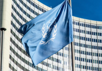 КНДР раскритиковала ООН за