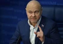 Оренбургский депутат дал свой прогноз относительно новых партий в новом созыве Госдумы