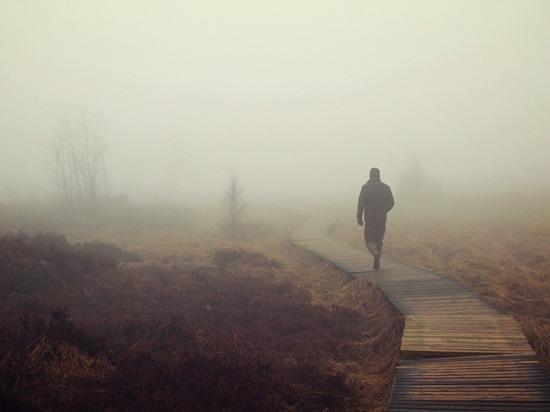 Туристы проявляют большой интерес к Васюганским болотам в Томской области
