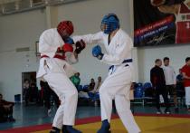 На Кубани прошли соревнования по армейскому рукопашному бою среди казаков
