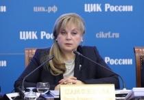 Член ЦИК испортил бюллетень на заседании с Памфиловой