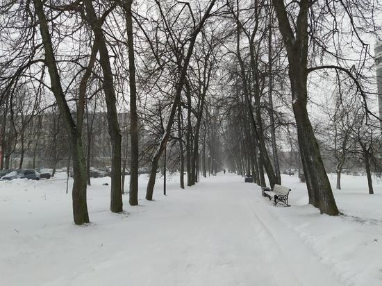 Власти Петрозаводска пообещали сохранить Левашовский бульвар