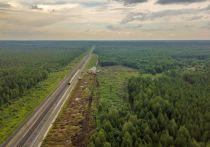 Продолжение рассмотрения дела о рубке леса на Шиесе назначено на 16 апреля