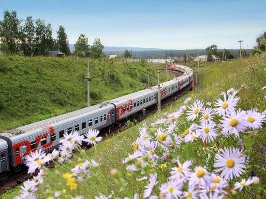 На СвЖД увеличивают количество поездов в Адлер и Санкт-Петербург