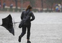 Синоптики предупреждают жителей Хакасии о сильном ветре