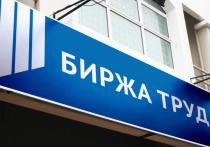 Количество безработных в Петербурге резко выросло, а потом резко сократилось