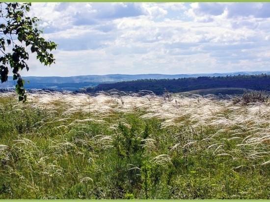 В Кузбассе заказник приобрёл статус особо охраняемой природной территории к 300-летию региона