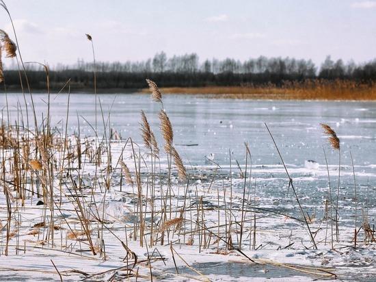В Алтайском крае закрыли все ледовые переправы