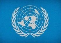 В Казани эксперты открыли Казанскую модель ООН