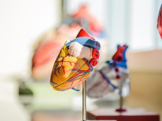 В Нижегородской области будет создано 7 центров для пациентов с болезнями сердца