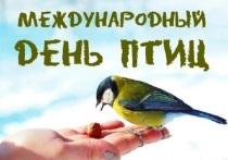 Конкурс скворечников пройдёт в Серпухове