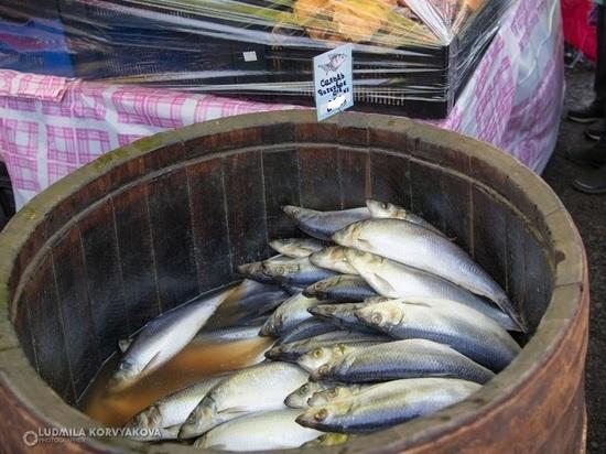 У лоточницы из Кеми изъяли 25 кг рыбы