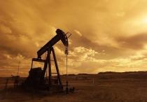 Страны ОПЕК+ согласились нарастить добычу нефти