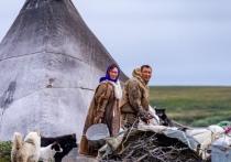 Фильм о семье оленевода снимут в тундре Ямальского района