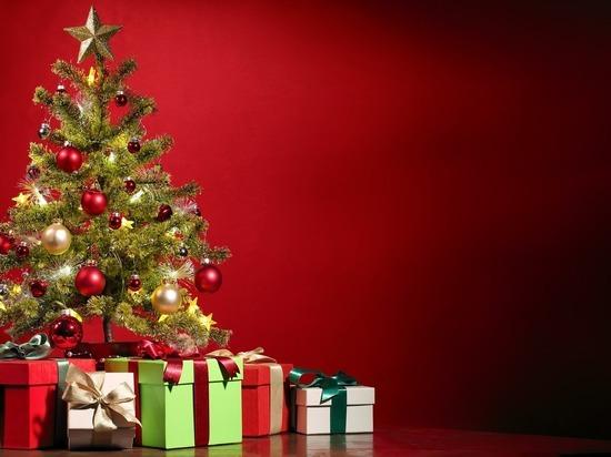 Депутаты решили узнать мнение томичей о детских новогодних подарках