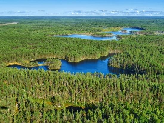 Обладателями «Арктического гектара» в Карелии пожелали стать 134 человека